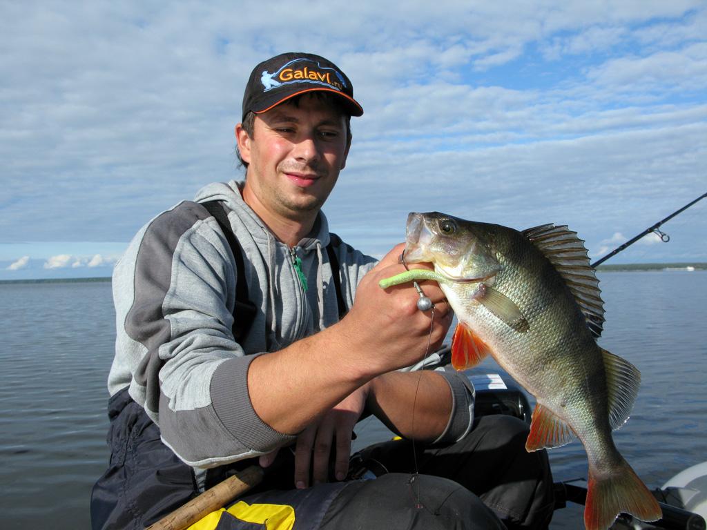рыбак ловит окуня