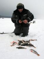 Снасть для зимней рыбалки на окуня виды снастей приманки