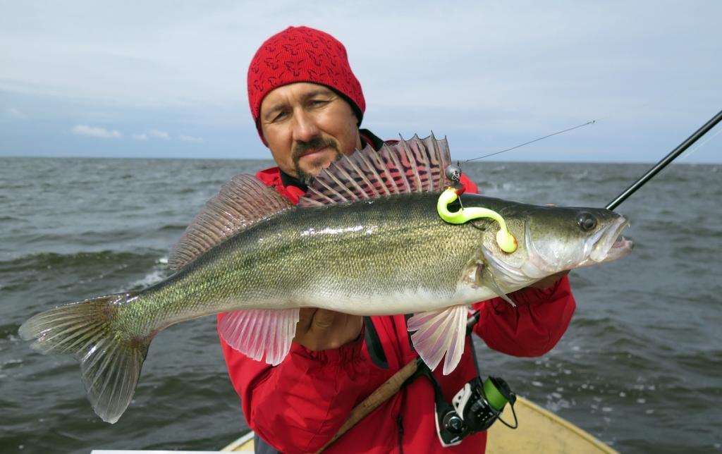рыбалка в августе в ленинградской