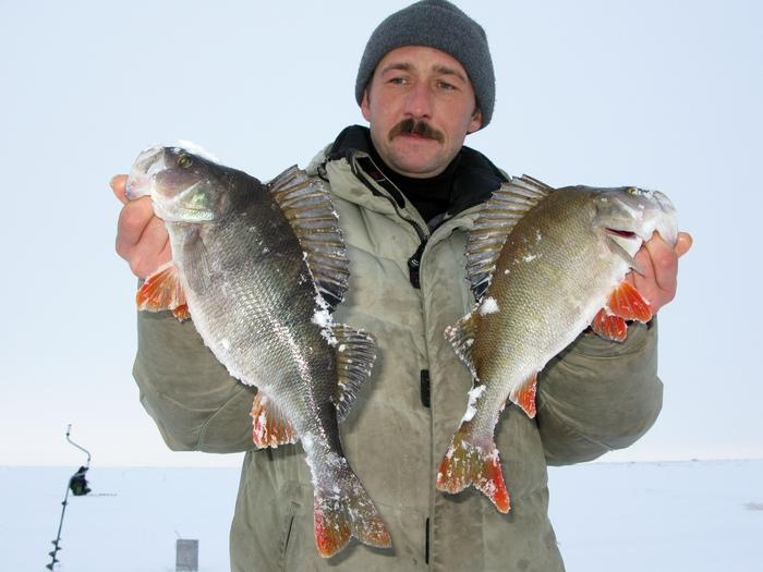 рыбалка в ярославской области видео на рыбинском