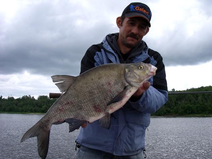 рыбинское водохранилище рыбалка на хищника