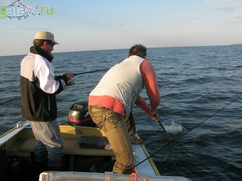 места ловли на рыбинском