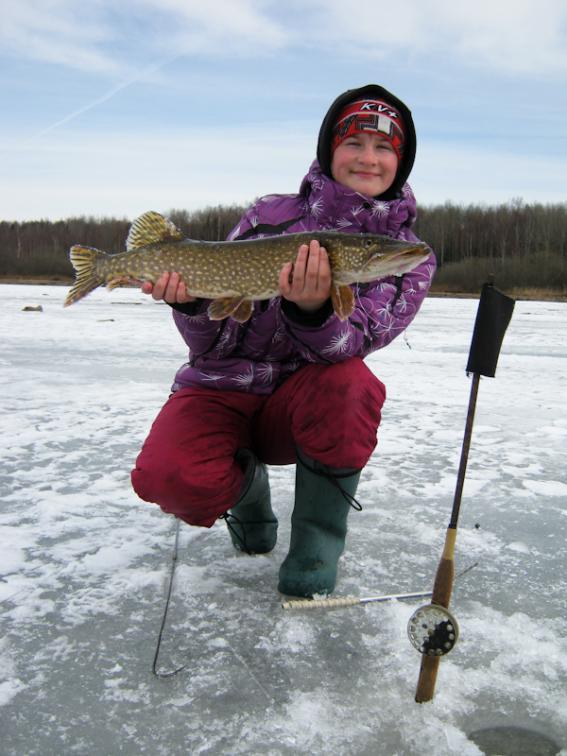 отчеты о рыбалке в вологодской области 2017 год