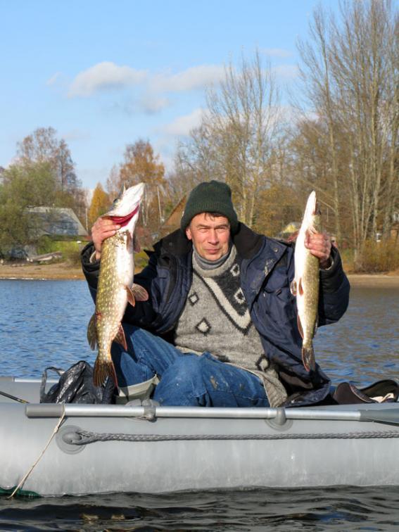 ловить щуку в ярославской области
